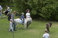 Rahmenprogramm Ponyreiten